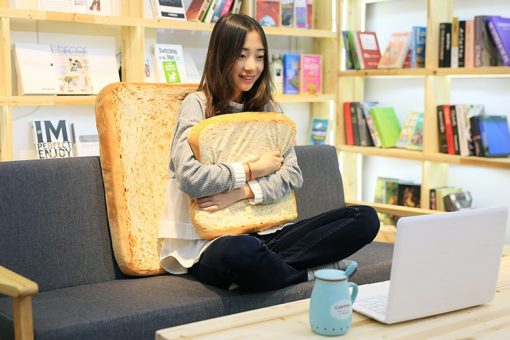 16inch Toasted Bread Slice Pillow Plush Toy